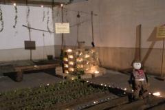 fontane di luce 2012 45