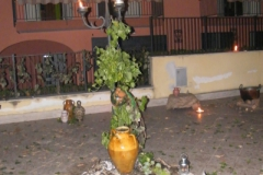 fontane di luce 2012 59