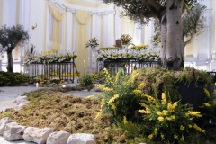 altare reposizione 2015 8