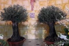 Altare reposizione 2018 (44)