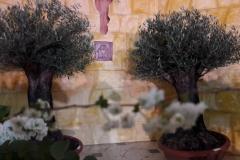 Altare reposizione 2018 (46)