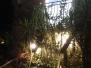 Fontane di luce 2012