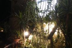 fontane di luce 2012 4