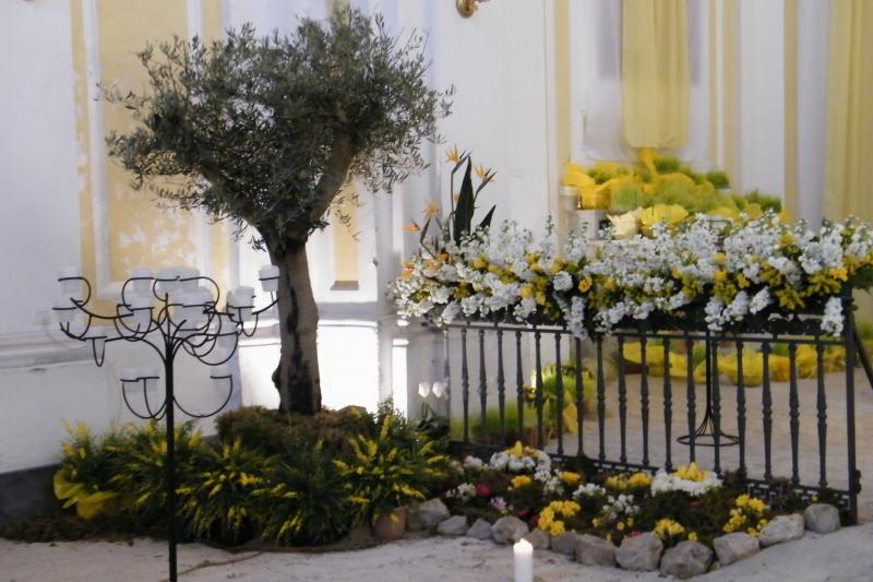 altare reposizione 2015 15