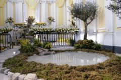 altare reposizione 2015 13